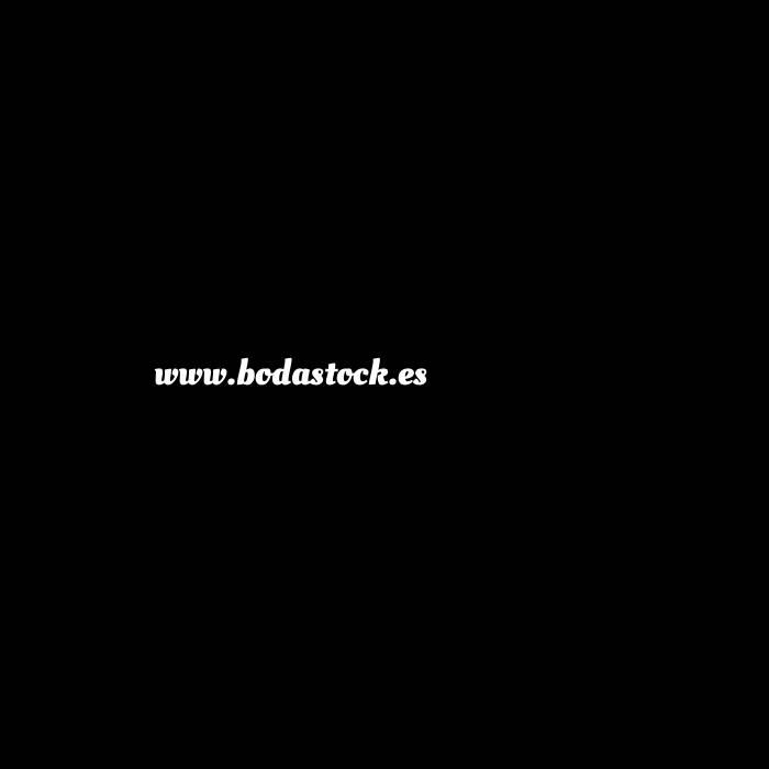 Imagen Alta Calidad Sandalias planas Plateadas Trenzadas - Caja de 12 pares (Últimas Unidades)